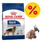 Duże opakowanie Royal Canin Size + Trixie sęp Gustav w super cenie!
