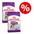 Dwupak Royal Canin Giant