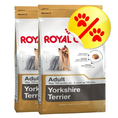 Dwupak Royal Canin Breed Yorkshire Terrier Adult