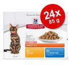 Ekonomično pakiranje: Hill's Feline vrećice 24 x 85 g