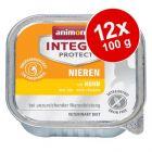 Ekonomipack: Animonda Integra Protect Adult Renal 12 x 100 g portionsform