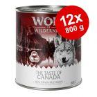 Ekonomipack: Wolf of Wilderness The Taste Of 12 x 800 g