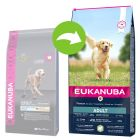 Eukanuba Adult Large Breed Jehněčí s rýží