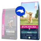 Eukanuba Adult Large Breed Lamm & Reis