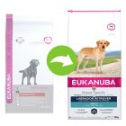 Eukanuba Adult Breed Specific Labrador Retriever pour chien