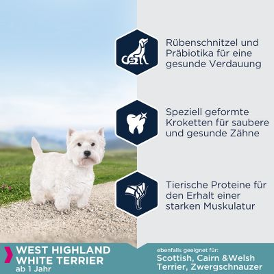 Eukanuba Adult Breed Specific West Highland White Terrier