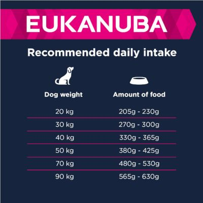 Eukanuba Adult Large Breed Lam & Ris