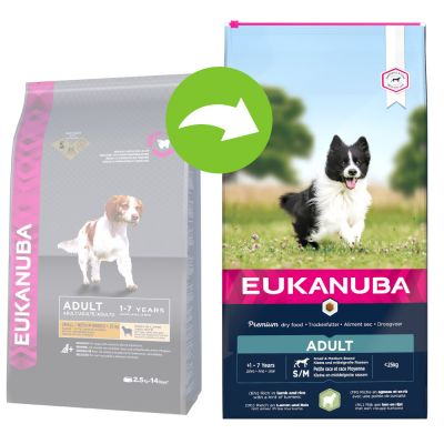 Eukanuba Adult Small & Medium Breed, jagnięcina i ryż