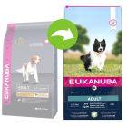 Eukanuba Adult Small / Medium Breed jagnjetina & riž