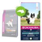 Eukanuba Adult Small / Medium Breed  janjetina i riža