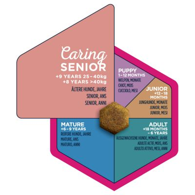 Eukanuba Caring Senior Large Breed Pollo