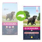 Eukanuba Caring Senior Large Breed poulet pour chien