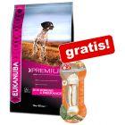 Eukanuba Daily Care / Performance hundefoder + 8in1 Snacks gratis!