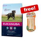 Eukanuba Dry Dog Food + 8in1 Treats Free!*
