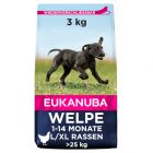Eukanuba Growing Puppy Large Breed Chicken