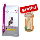 Eukanuba + 8in1 Delights Snack gratis!