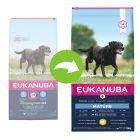 Eukanuba Mature & Senior Large Breed с курицей