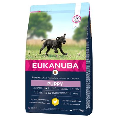 Eukanuba Puppy Large Breed frango