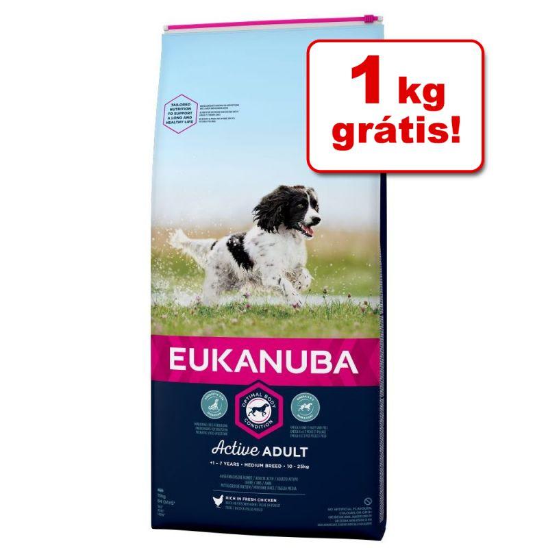 Eukanuba ração 12 kg e 15 kg em promoção: 1 kg grátis!