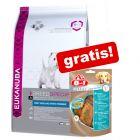 Eukanuba Trockenfutter + 8in1 Snacks gratis!