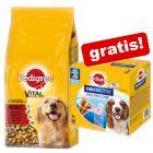 Extra voordelig! Pedigree Droogvoer 15 kg + Pedigree Dentastix gratis!