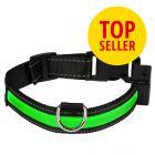 Eyenimal LED-Leuchthalsband - grün