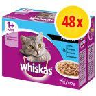 Fai scorta! Whiskas 1+ buste 48 x 100 g