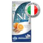 Farmina N&D Ocean Grain Free Adult Medium/Maxi Aringhe & Arancia