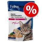 Feline Porta 21 Pouches 24 x 100 g erikoishintaan!