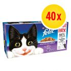 Felix Classic Pouches in Gelee 40 x 100 g