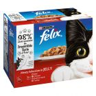 Felix Pouches in Jelly Multibuy 24 x 100g
