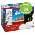 Felix Pouches in Jelly Saver Pack 24 x 100g