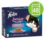"Felix ""As good as it looks"" Junior 48 x 85 g"