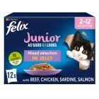 """Felix """"Aussi bon que beau"""" Junior 12 x 100 g pour chat"""
