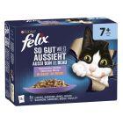 """Felix """"Aussi bon que beau"""" Senior 12 x 85 g pour chat"""