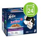 Felix Elke Dag Feest Kattenvoer Junior Selectie in Gelei 24 x 100 g