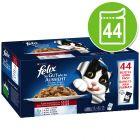 Felix Elke Dag Feest Kattenvoer Voordeelpakket 44 x 100 g