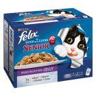 """Felix  """"Fantastic"""" Senior (Tan bueno como parece) 12 x 100 g"""