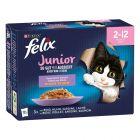 """Felix Fantastic (""""So gut..."""") - Junior"""