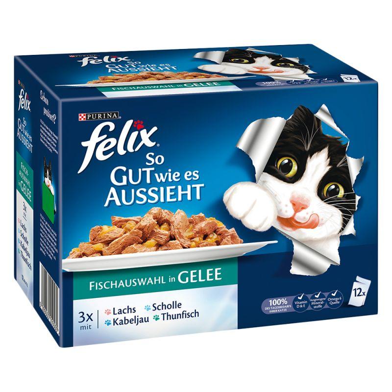 Felix Fantastic 12 x 100 g