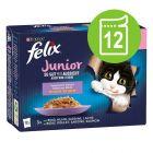 """Felix Junior """"La fel de bun pe cât arată"""" Pliculețe 12 x 85 g"""