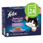 """Felix Junior """"La fel de bun pe cât arată"""" Pliculețe 24 x 85 g"""