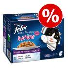 Felix Junior / Senior, 48 x 100 г со скидкой 15%!