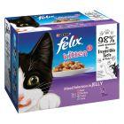 Felix Kitten Buste in gelatina