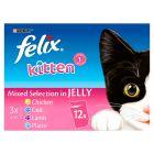 Felix Kitten Pouches