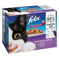 Felix Senior Buste in gelatina