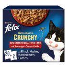 Felix Sensations Crunchy Crumbles 20 x 100 g + 2 x 40 g de pépites pour chat
