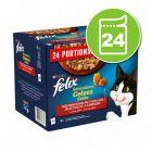 Felix Sensations gelée 24 x 100 g pour chat