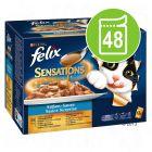 Felix Sensations în sos 48 x 100 g