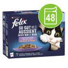 """Felix """"So gut..."""" Senior kapsičky 48 x 85 g"""